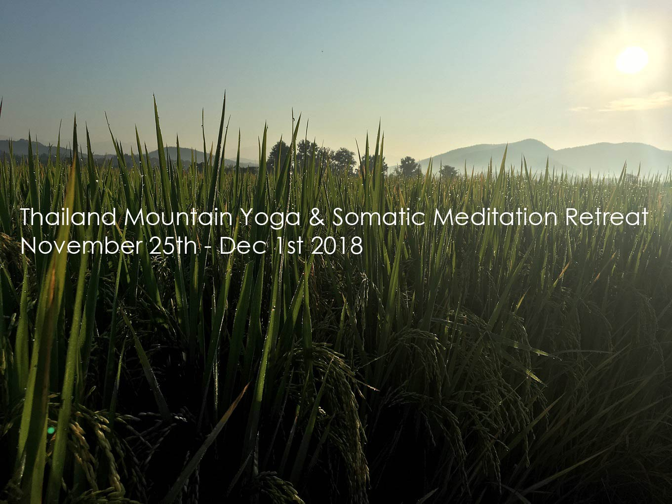 Somatic Meditation Yoga Retreat at Mala Dhara Eco Resort Chiang Mai