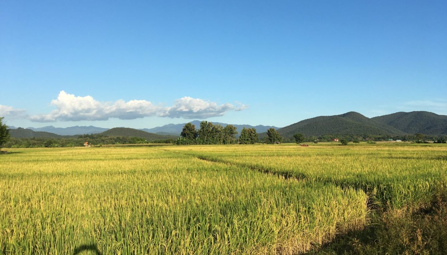 Thantra Retreat Chiang Mai Thailand